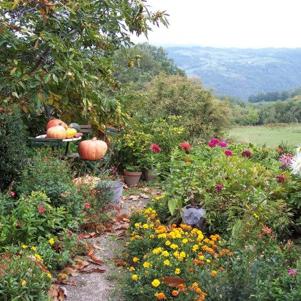 Pumpkin Garden on the Le Puy to Conques Pilgrimage route